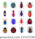 bug, insect, icon 25432598