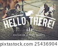 Hello Hi Greeting Communication Networking Concept 25436904