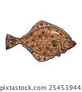 가자미, 도다리, 물고기 25453944