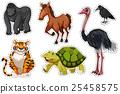 Sticker set with different wild animals 25458575