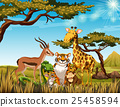 Wild animals in the savanna field 25458594
