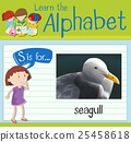 Flashcard letter S is for seagull 25458618