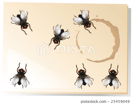 Many flies on the water stain 25459049
