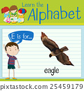 alphabet, education, letters 25459179
