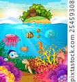 Sea animals swimming under the sea 25459308