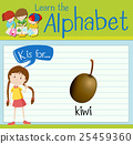 Flashcard letter K is for kiwi 25459360