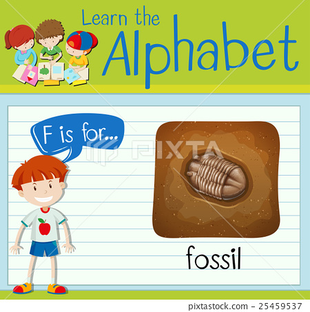Flashcard letter F is for fossil 25459537