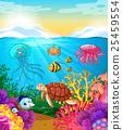 海 海洋 水下 25459554