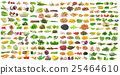 set of vegetable on white background 25464610