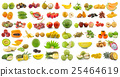 set of fruit on white background 25464619