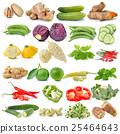 set of vegetable isolated on white background 25464643