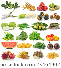 set of fruit and vegetable on white background 25464902