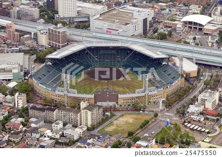 阪神甲子园体育场鸟瞰图 25475550