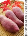红薯 紫色 紫薯 25488800