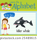 Flashcard letter K is for killer whale 25489615
