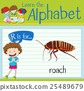 english, alphabet, child 25489679