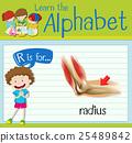 english, alphabet, child 25489842