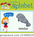 english, alphabet, child 25489929
