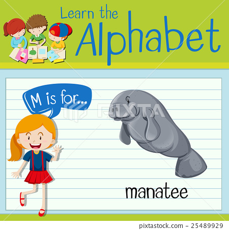 Flashcard letter M is for manatee 25489929