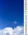 雲蓋 25499800