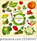 vegetable fruit vector 25500447
