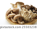 버섯의 집합 25503238