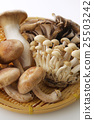 蘑菇 傳統 椎茸 25503242