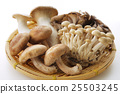 A collection of mushrooms 25503245