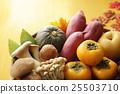 秋天的食物图象 25503710