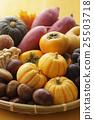 秋天 食材 原料 25503718