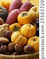 秋天 秋 食品 25503720