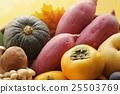 秋天 秋之美食 食材 25503769