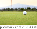 golf ball on green course 25504338
