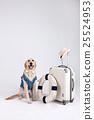 Animal companion and me 014 25524953