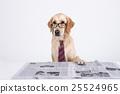 Animal companion and me 019 25524965