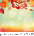 Autumn background with colorful leaves and rowan. 25528739