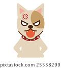 怒る犬 25538299