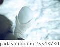 หิมะรูปหัวใจ 25543730