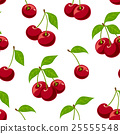 Cherry seamless pattern.  25555548