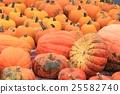 秋天 秋 橙色 25582740