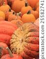 秋天 秋 橙色 25582741