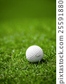 Golfball on course 25591880
