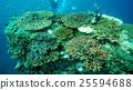 กลุ่มของปะการัง Kushimoto 25594688