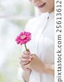 女性 非洲菊 開花 25613612