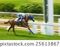 Motion blurred the winner horse race 25613867