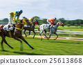Motion blurred Race horse 25613868