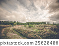 Prairie landscape with green trees 25628486
