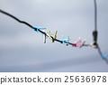 clothes pin 25636978