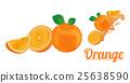 柑橘 水果 橙色 25638590