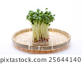 vegetable, vegetables, sieve 25644140